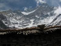 Západná stena Dhaulágirí z Italian BC.