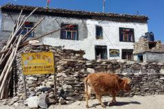 Hotel Nilgiri guest house v dedinke Shyammochen.